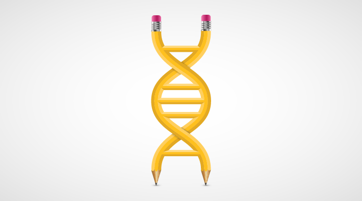 Illustration of two yellow pencils in the form of a double helix against a stark background.