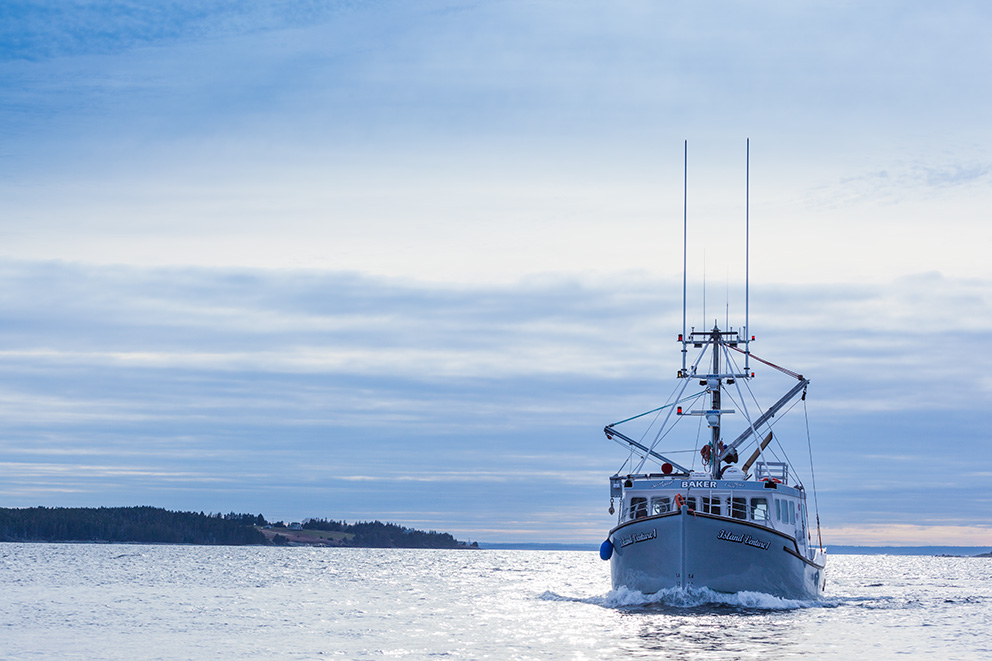 A large fishing boat moves through calm water, with a pale blue hue colouring the sky and water surface. A spit of land is visible in the background.