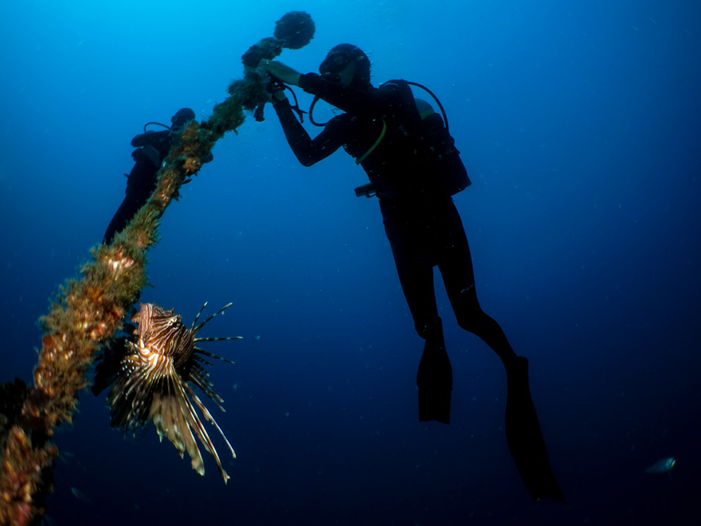 Photographed underwater, two divers are shown attaching a piece of monitoring technology to a large, vertical shaft of some kind,  while an ornate fish with frilly fins swims nearby.