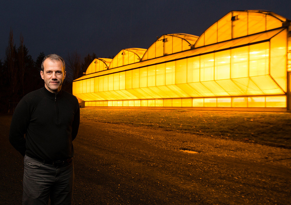 A man stands in front of a series of greenhouses that glow a golden-orange colour from the lights within.