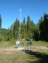 A researcher monitors the Quesnel River Research